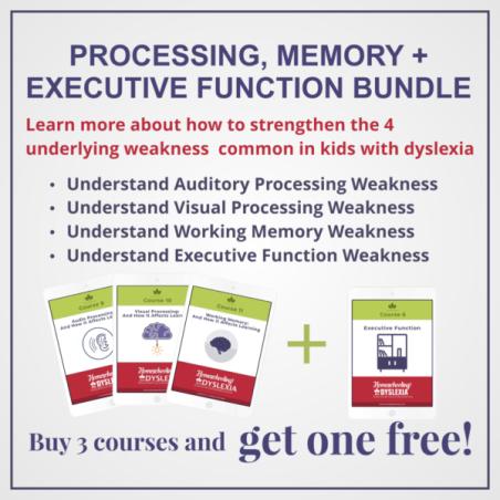 Processing-Memory-Executive-Function-Bundle-1-600x600